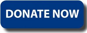 donate-now-300x113.jpg