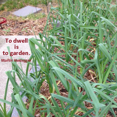 To dwell is to garden. Martin Heidegger