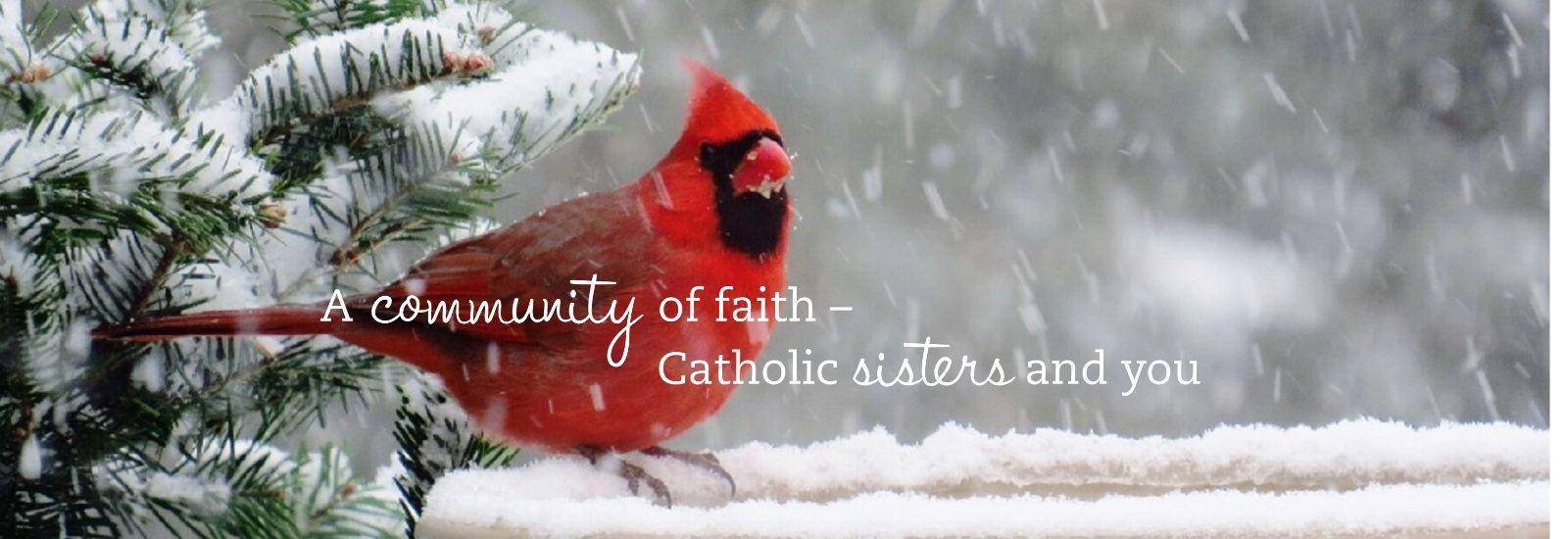 A Nun's Life Ministry
